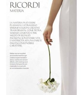 RICORDI MATERIA SFIDE D'ARTE Fassa